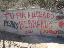 Spray painted threats against Bernardo Vásquez Sánchez in San José Progreso, Oaxaca